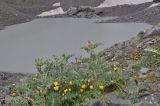 Окрестности озера Абуделаури