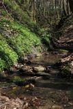 Долина ручья Красный Водопад