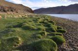 Озеро Дунд-Нуур