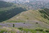 Гора Лысая-Новороссийская