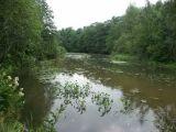 Лахтинское болото