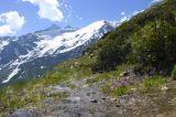 Восточный склон горы Чегет