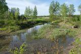 Истоки Шингарки