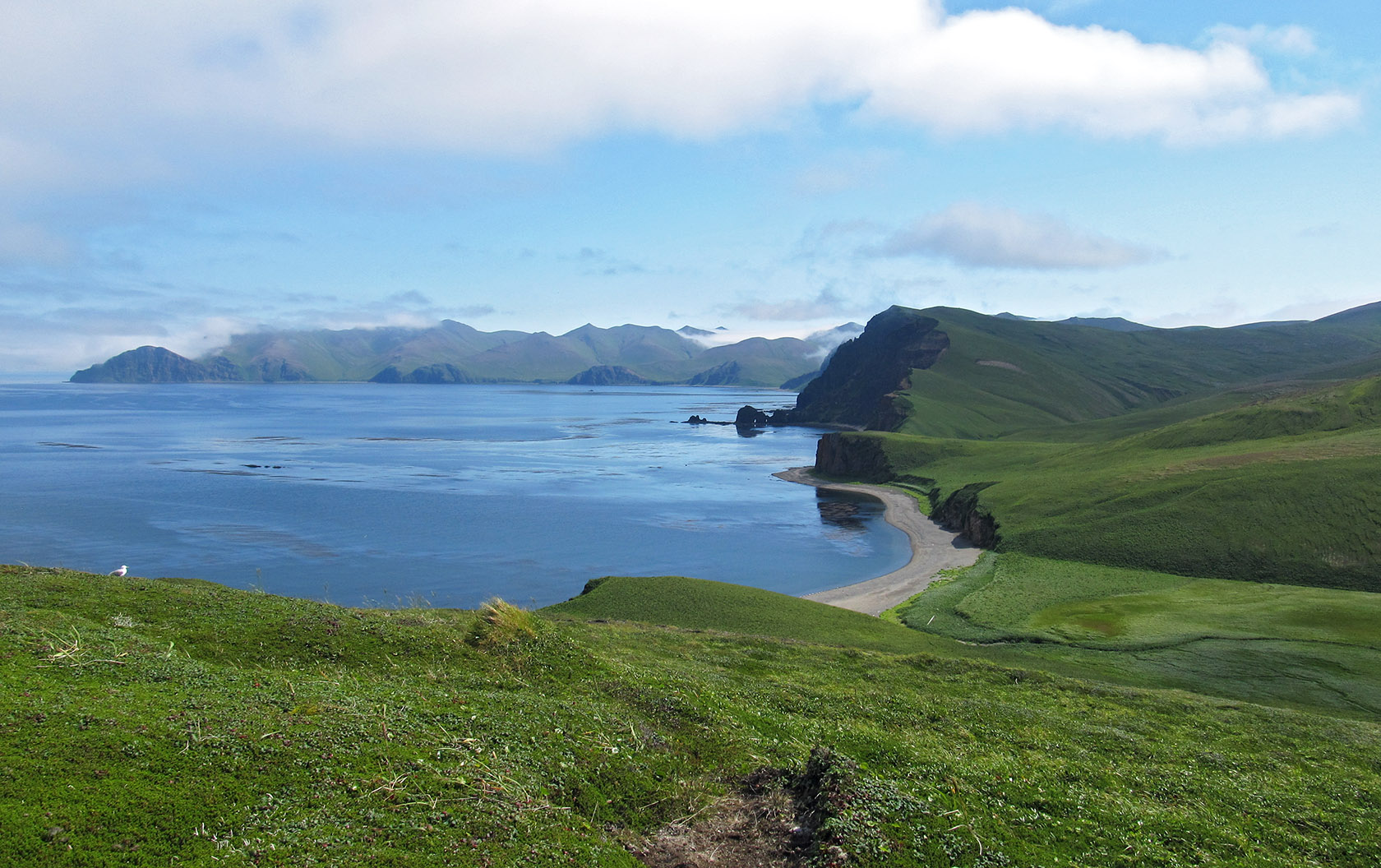 наше поле фото остров медный миримская