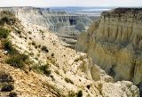 Меловое плато Актолагай
