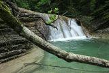 Истоки реки Куаго