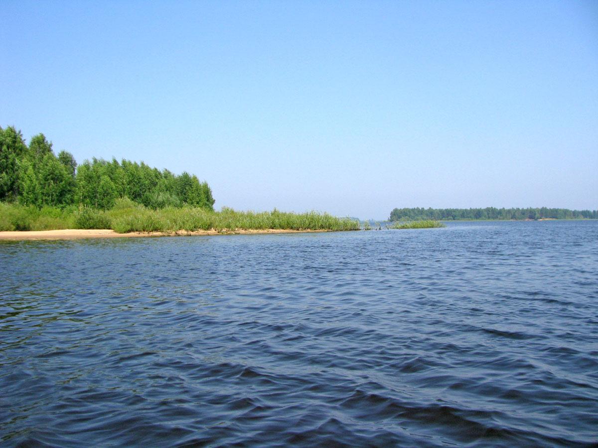 http://www.plantarium.ru/dat/landscapes/5/55/5538_9bb5cf50.jpg