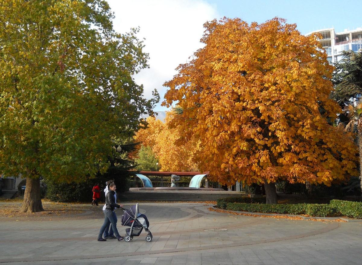 Каштан осенью